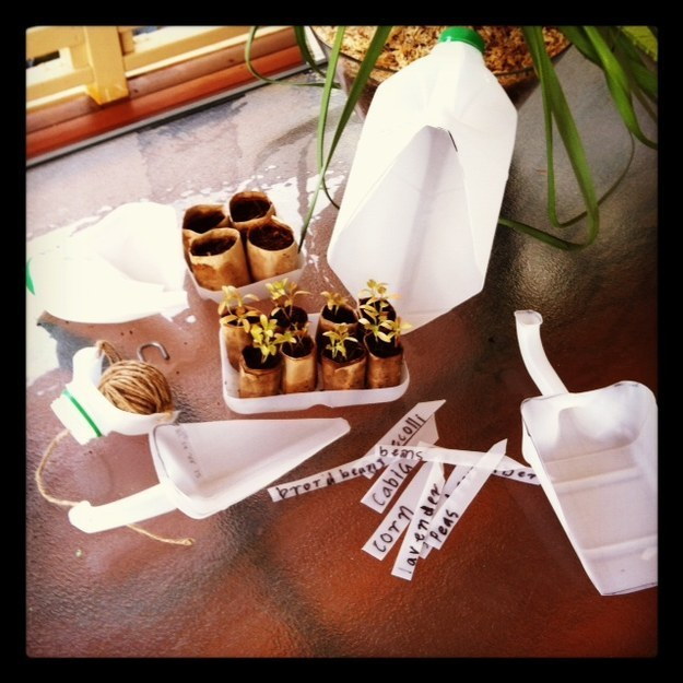 Cut old milk jugs to make some sweet gardening tools like shovels and labels.