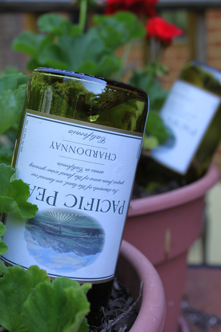 Reuse wine bottles to keep your plants watered.