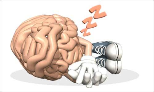 Sleeping at night is considered the most ideal time for the brain. It appears to enhance the connection between nerve cells in the brain. The brain process is believed to support the basis of memory and learning. In a recent scientific study, it is revealed the brain consolidates all the learned memories from the whole day while sleeping at night.