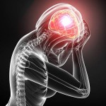 The brain does not have any pain receptors and, consequently, cannot feel pain.