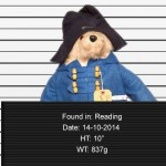Imagine how excited you would be as a little kid to discover that your lost stuffed animal was found.