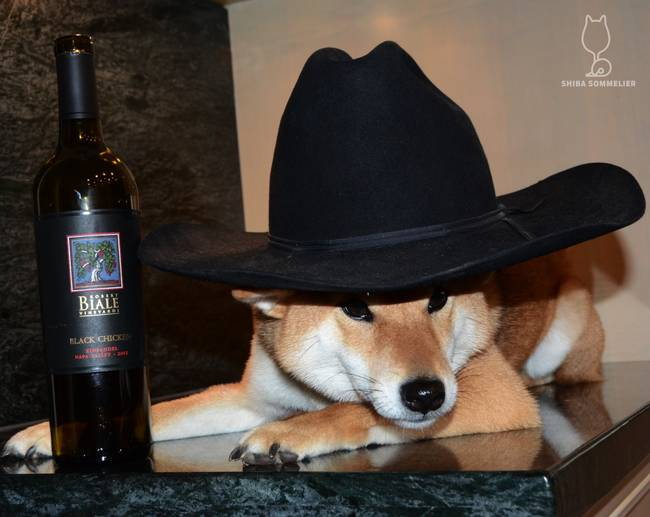 Apparently most wines go well with hats?