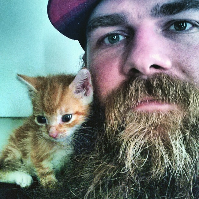 He could definitely hide that kitten inside his bristly beard.