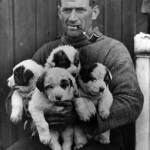 Was this Antarctic explorer the original tough guy with cute pups?