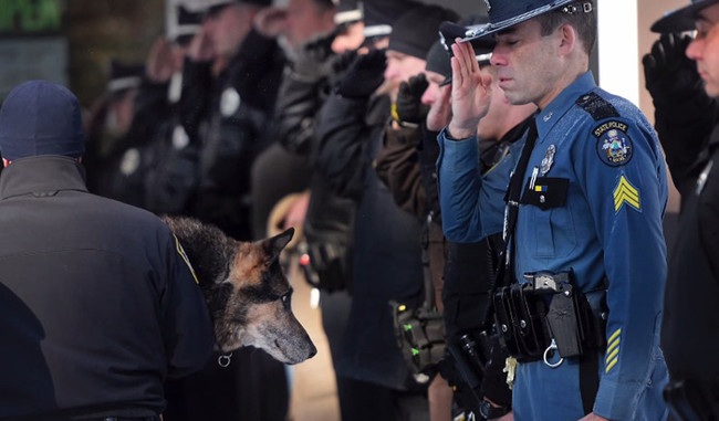 Dozens of K9 cops from around the state made their way to Yarmouth for Sultan on his last day to honor their canine comrade.