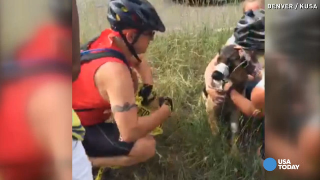 She was frightened, but the kind strangers were able to calm her down while they waited for authorities.