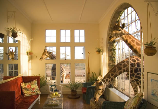 The Giraffe Manor is located in Nairobi, Kenya.