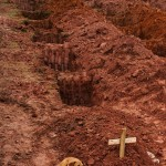 "A dog named ""Leao"" sits for a second consecutive day at the grave of her owner paersnack.com"