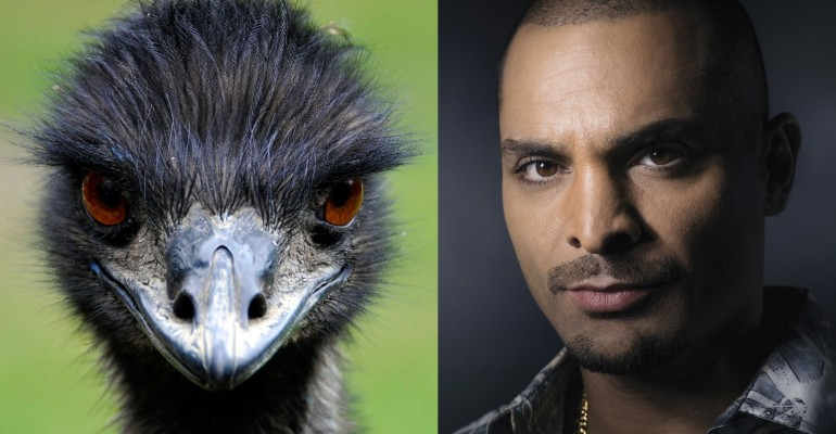 Nach look like an Emu Better Call Saul Breaking Bad papersnack.com