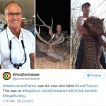 cecil-lion-illegal-hunting-internet-backlash-walter-palmer-zimbabwe-9-e1438176619259