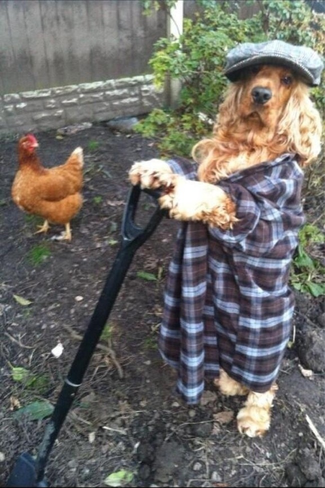 Just tending to my farm.