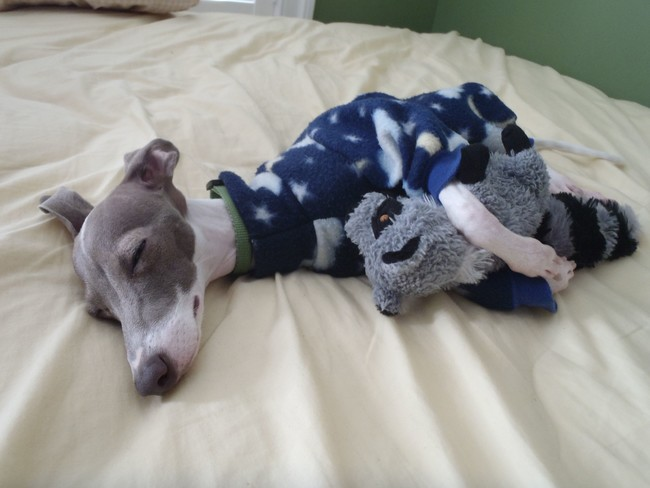 The jammies push this over the edge on the cuteness scale.