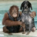 suryia-and-roscoe-pic-barcroft-image-1-350354283