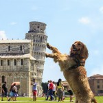 """Another """"holding up the Leaning Tower of Pisa"""" pic."""